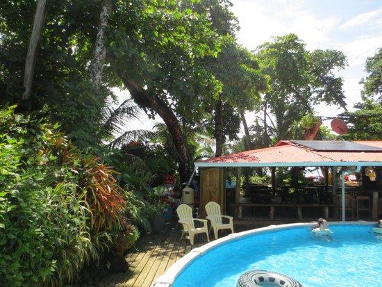 Playa Bluff Lodge: refreshing pool