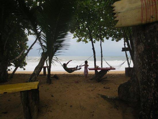 Playa Bluff Lodge: hammocks on the beach