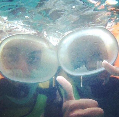 Fury Water Adventures Key West: Snorkeling