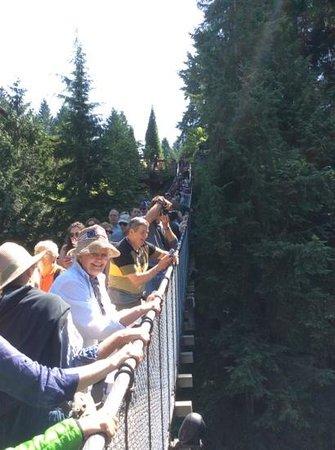 Capilano Suspension Bridge und Park: anybody ready to swing?