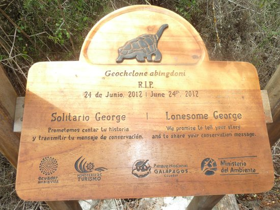 Charles Darwin Research Station: Memoria al Solitario George