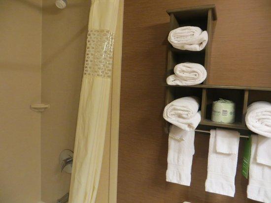 Hampton Inn & Suites Springdale Zion National Park: 使いやすいバスルーム