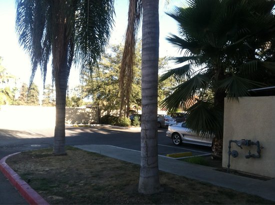 Red Roof Inn Tulare-Downtown/Fairgrounds: Parking lot view