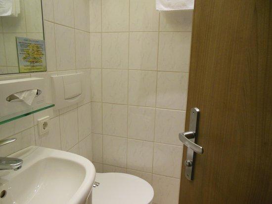 Hohenstauffen Hotel: トイレと洗面台