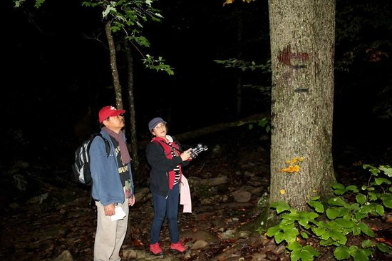 Hawksbill Crag: One of the earlier marks which I almost missed, not so visible at dark.