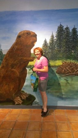 International Wildlife Museum : Wild Beavers