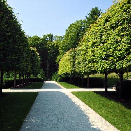 The Mount: Garden path