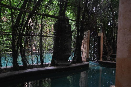 The Baray Villa : Pool access (Baray Villa)