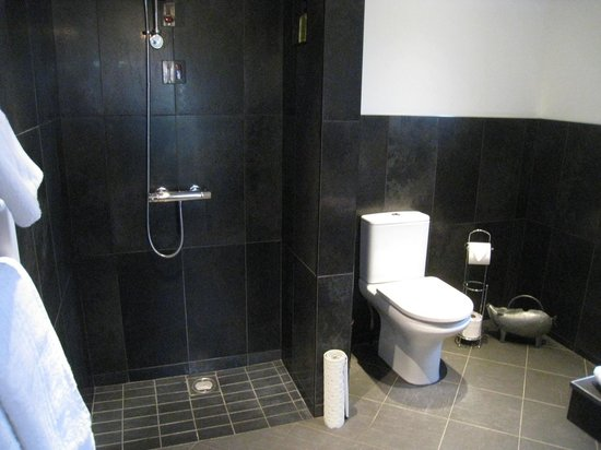 Bathroom With Open Shower Facing The Door Picture Of Hill View
