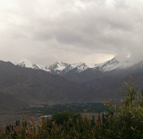 Ladakh Sarai: Looking out yurt window at snow capped peaks.