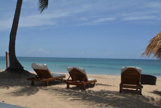 Zoetry Agua Punta Cana : Beach