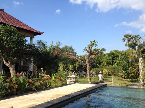 Man's Cottages & Spa : Pool and one of the villas