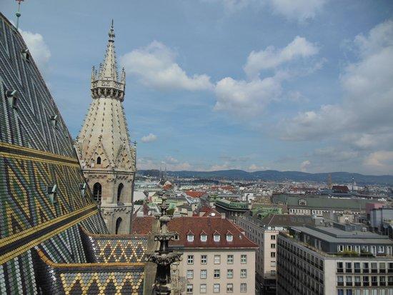 Stephansdom: 北塔からの眺望