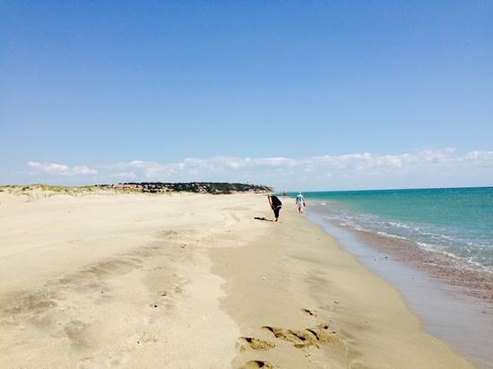 Hotel Troiz : Leucrete Beach