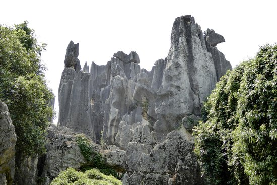 Yunnan Stone Forest Geological Park: Can you see Tom and Jerry?