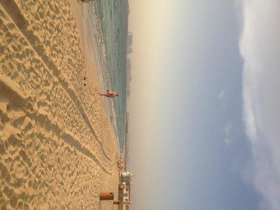 Hilton Dubai Jumeirah: Private beach area