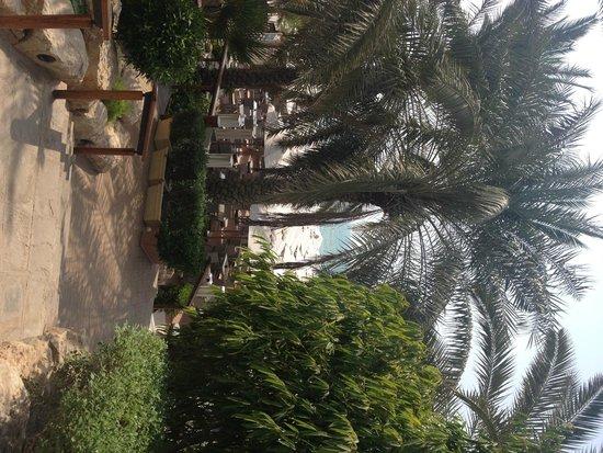 Hilton Dubai Jumeirah Beach : Walkway pool to beach