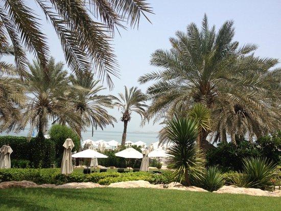 Hilton Dubai Jumeirah Beach : Beach view