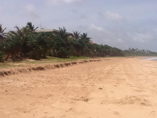 Centara Ceysands Resort & Spa Sri Lanka: bentota beach