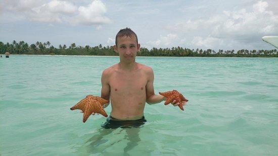 Isla Saona: Натуральный бассейн с морскими звездами