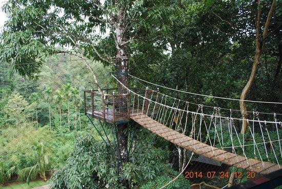 Vythiri Village Resort: Zip line,,,,take off
