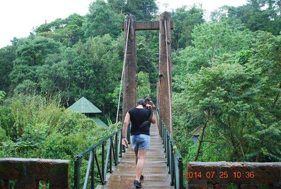 Vythiri Village Resort: meeting at hanging bridge