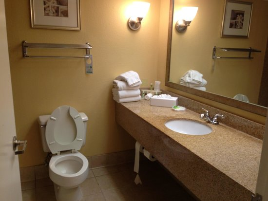 Holiday Inn Express Miami Airport Central-Miami Springs : Large bathroom