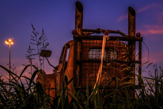 Sculpture Park: Rusted truck