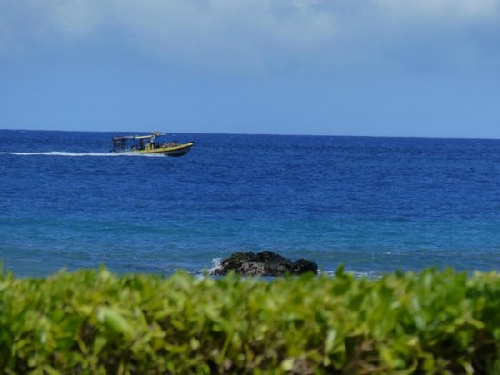 Fairmont Orchid, Hawaii: The beatiful sea shot from the pool side