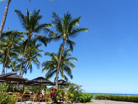 Fairmont Orchid, Hawaii : The blue sky above the pool side.