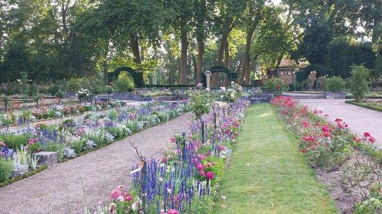 Les fleurs d 39 t foto van jardins des pr s fichaux for Le jardin des fleurs bourges