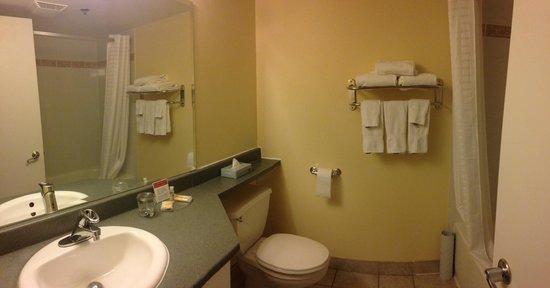 Candlewood Suites Montreal Centre-Ville: Salle de bain