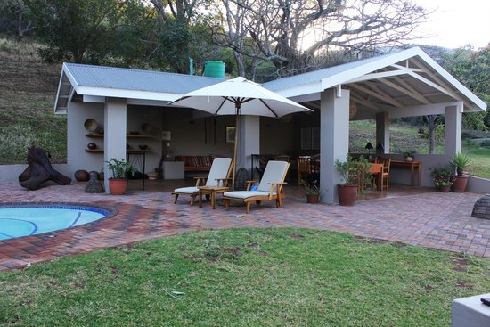 Madi a Thavha Mountain Lodge : pool area