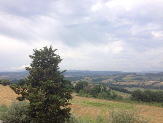 Castello di Montignano Relais & Spa: Vista dalla piscina