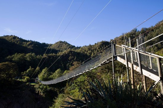 Buller Gorge Swingbridge Ltd: The Swing Bridge