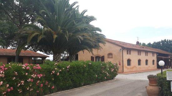 Fattoria San Lorenzo: Общий вид территории