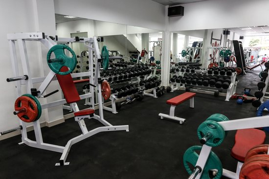 922a0b6b96c5b Top quality weight and cardio equipment. - Picture of Body Shape ...