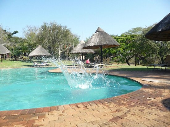 Pestana Kruger Lodge: Non-heated pool, still the kids loved it