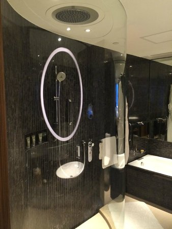 Hotel ICON: Shower Recess