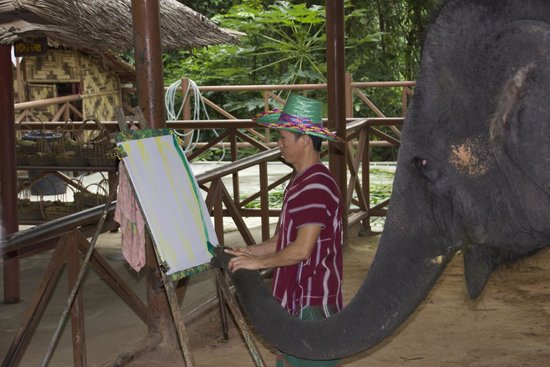 Siam Safari: Baby elephant painting