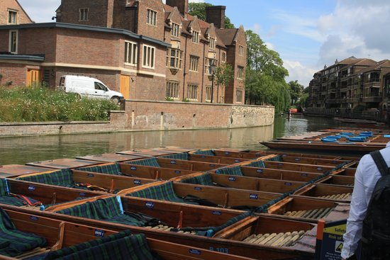 Scudamore's Punting Company: Punting Boats