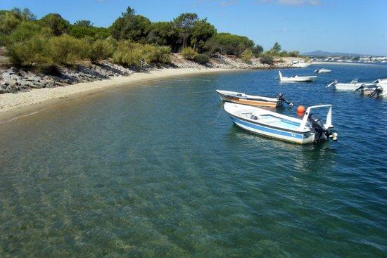 Tavira Island : La Playa