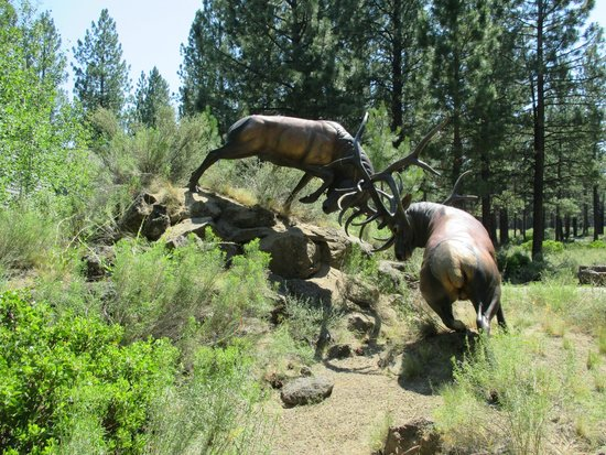 High Desert Museum : Awesome art all throughout!