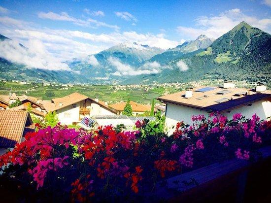 Hilburger: TOP-View Richtung Dorf Tirol / Meran
