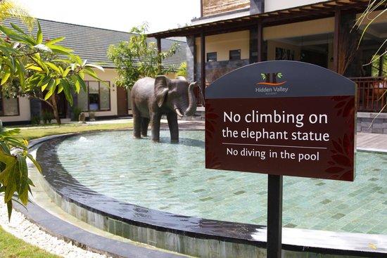 S Resorts Hidden Valley Bali : climb the elephant!