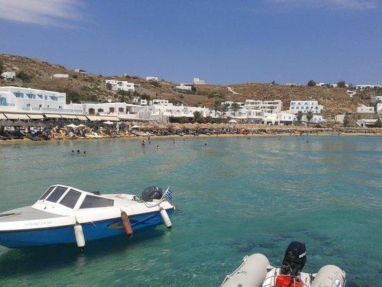 Argo Hotel Mykonos : Platys Gialos beach - 1 min from hotel