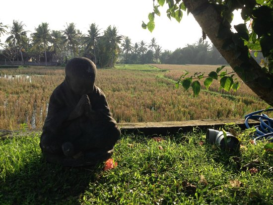Lodtunduh Sari : View on the ricefields
