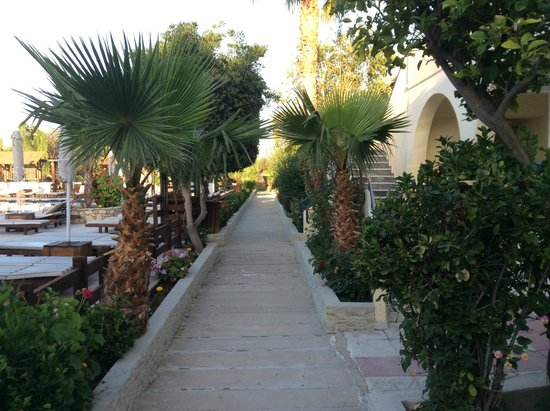 Early morning at Gaia Village