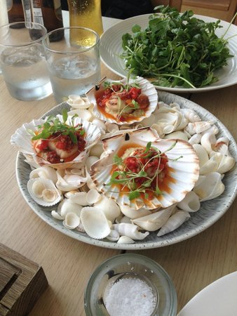 Harbour Fish and Grill: scallops with chrorizo