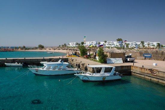Mercure Hurghada Hotel : Mercure vu du club de plongée SEAFARI
